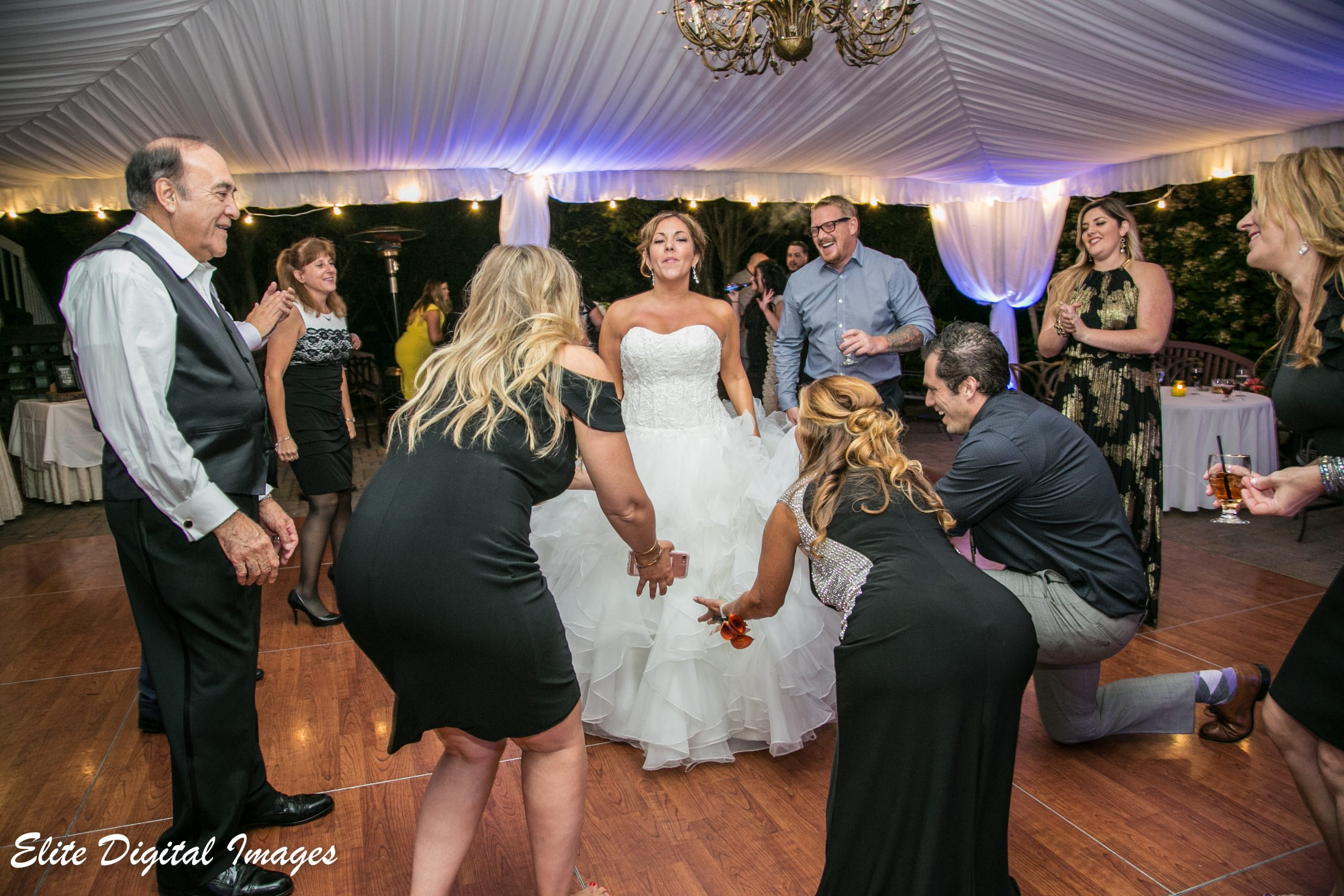 EliteEntertainment_NJWedding_EliteDigitalImages_OldeMillInn