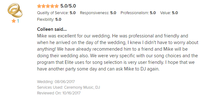 EliteEntertainment_WeddingWireReview_NJWedding_MikeWalter 2017 8-6-17