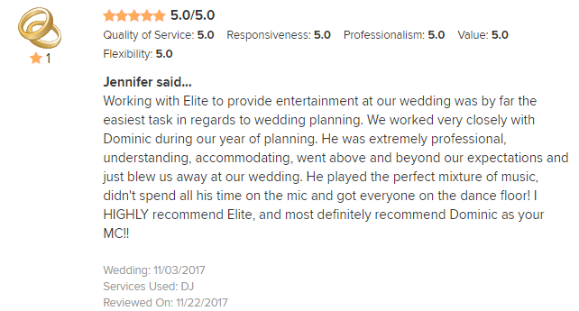 EliteEntertainment_WeddingWireReview_NJWedding_DominicSestito 2017 11-3-17