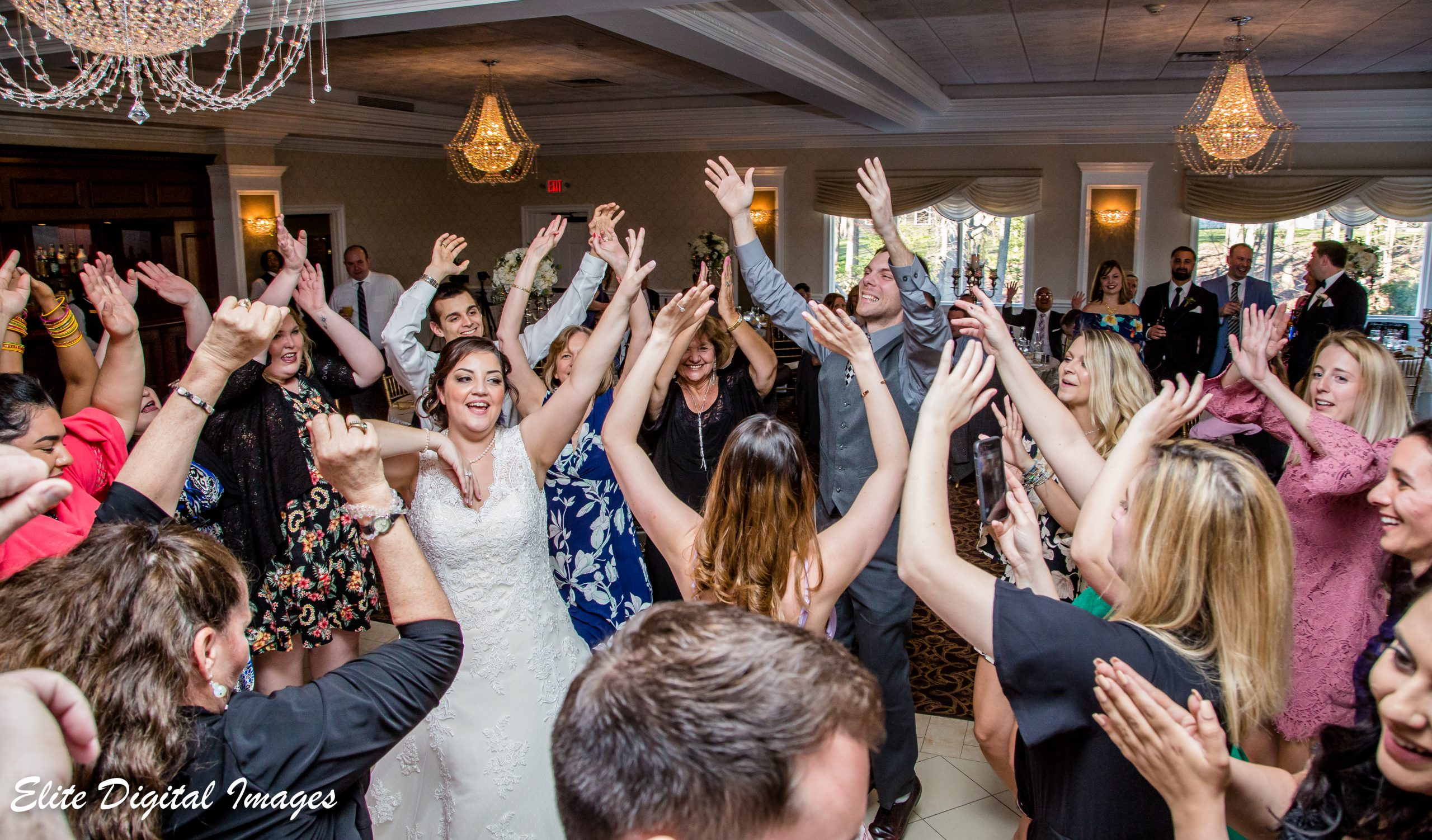 Elite Entertainment_ NJWedding_ EliteDigitalImages_EnglishManor_Danielle and Michael (3)