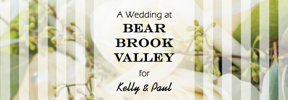 Bear Brook Valley Wedding for Paul and Kelly