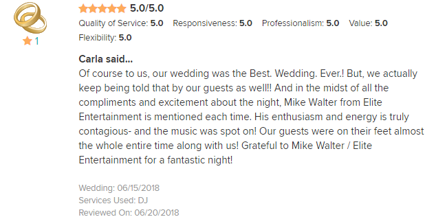 EliteEntertainment_WeddingWireReview_NJWedding_MikeWalter 2018 6-15-18
