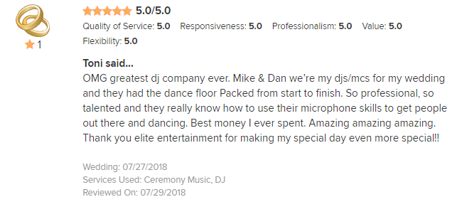 EliteEntertainment_WeddingWireReview_NJWedding_Mike and Dan M2018 7-27-18