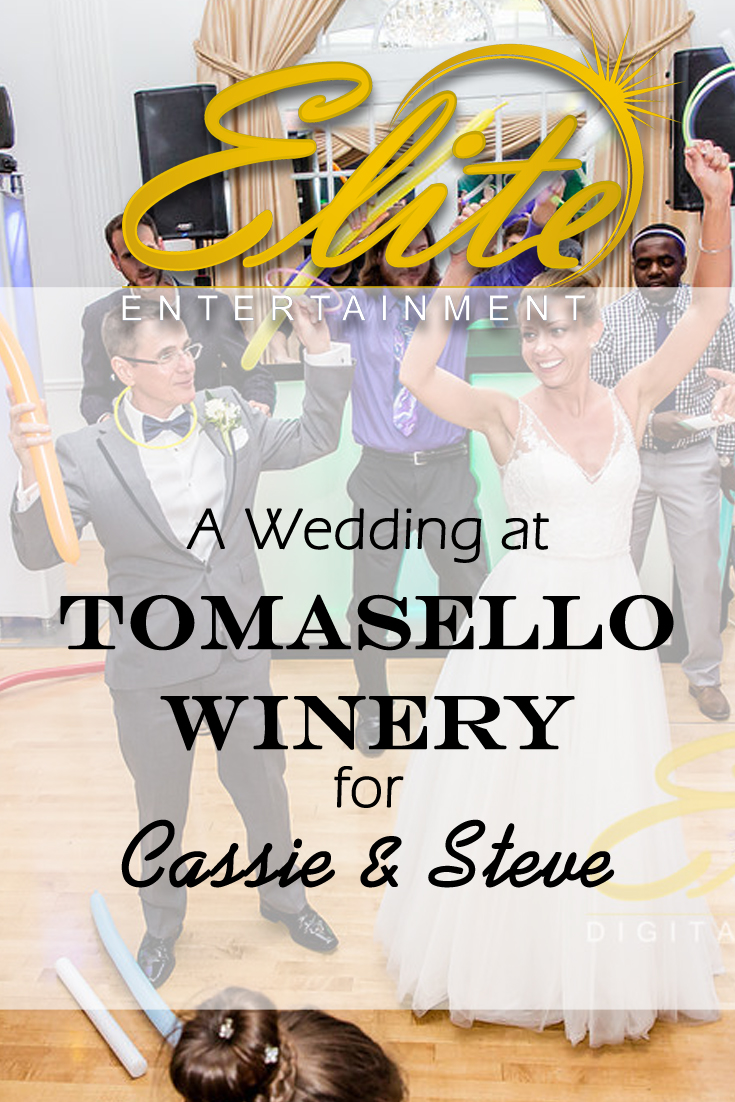 pin - Elite Entertainment - Wedding at tomasello winery for cassie and steve