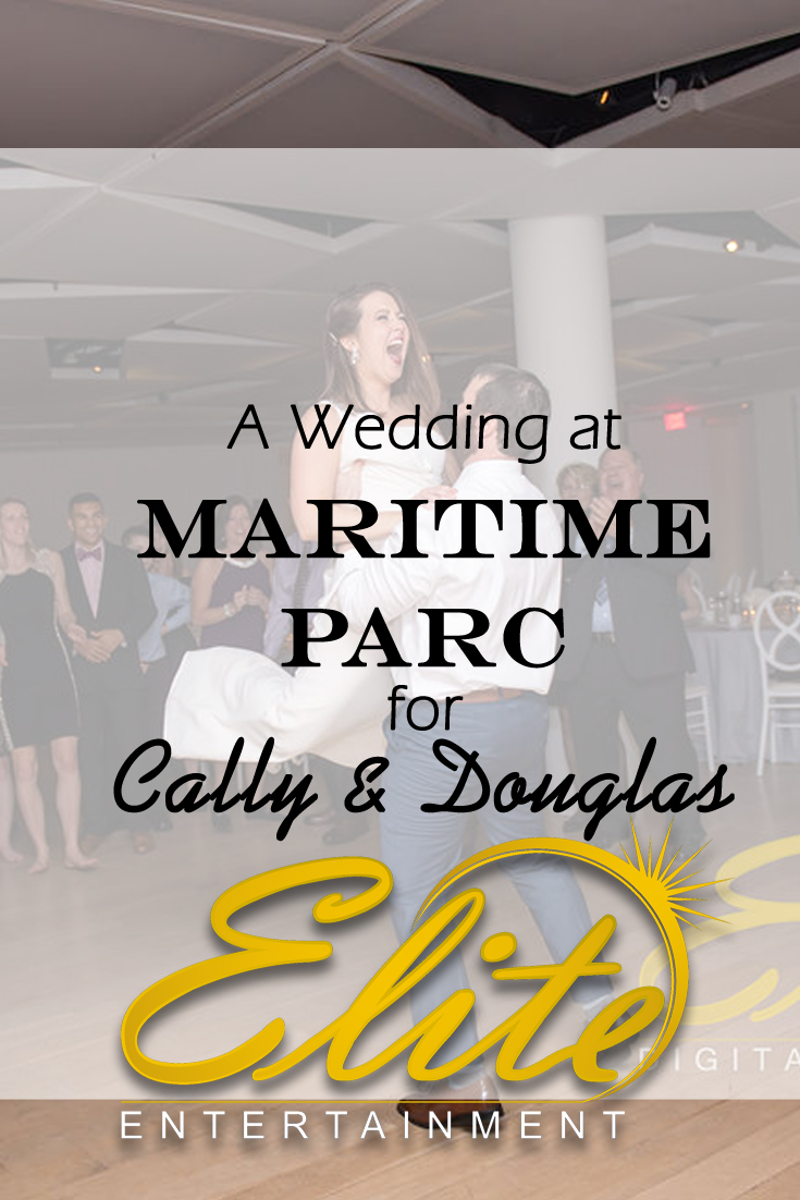 pin - Elite Entertainment - Wedding at Maritime Parc with Cally and Douglas