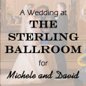 Sterling Ballroom at The Double Tree Wedding for Michele and David