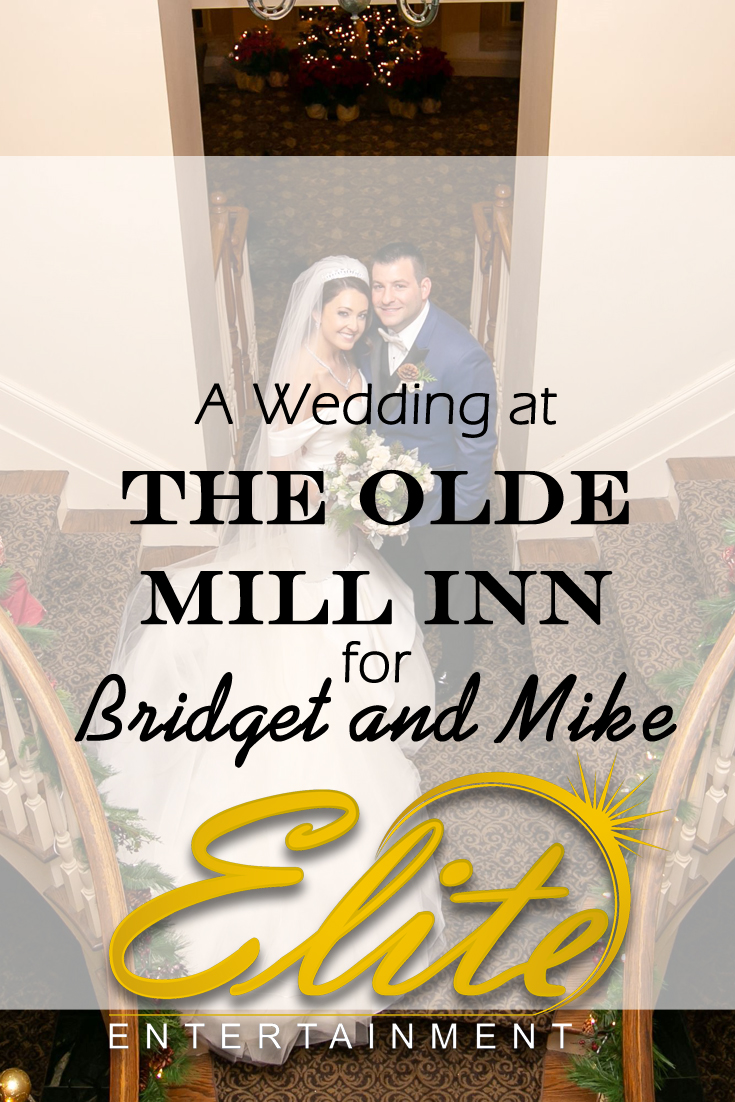 pin - Elite Entertainment - Wedding at Olde Mill Inn for Bridget and Mike