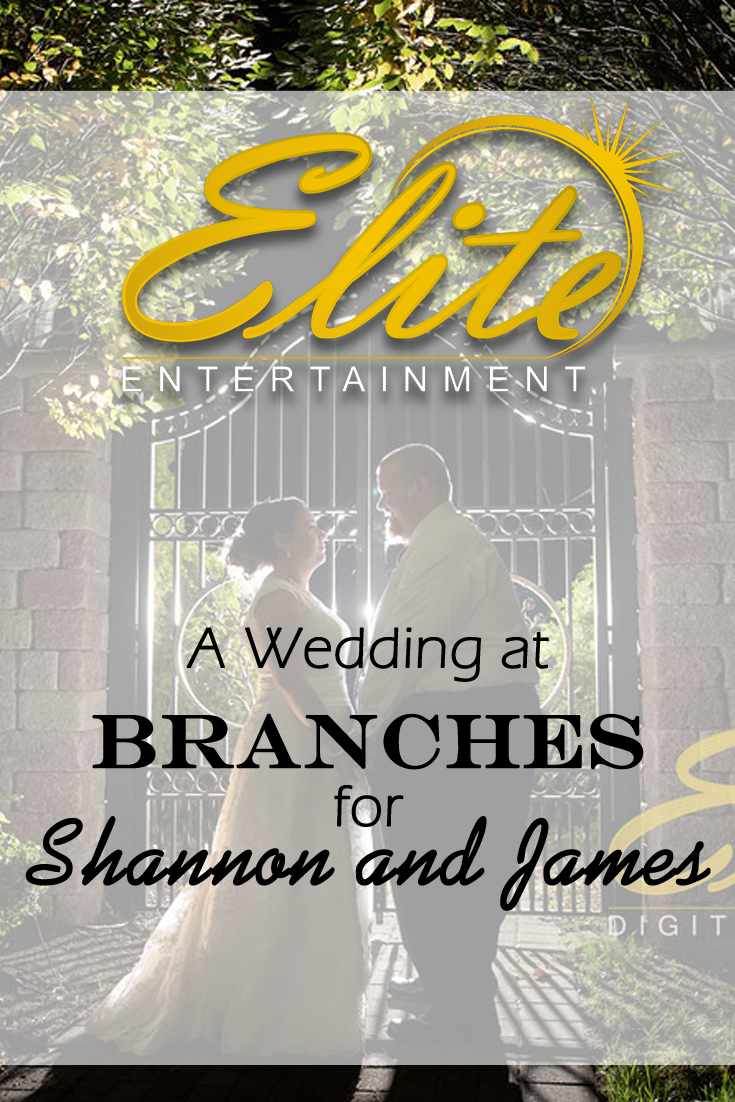 pin - Elite Entertainment - Wedding at Branches for Shannon and James
